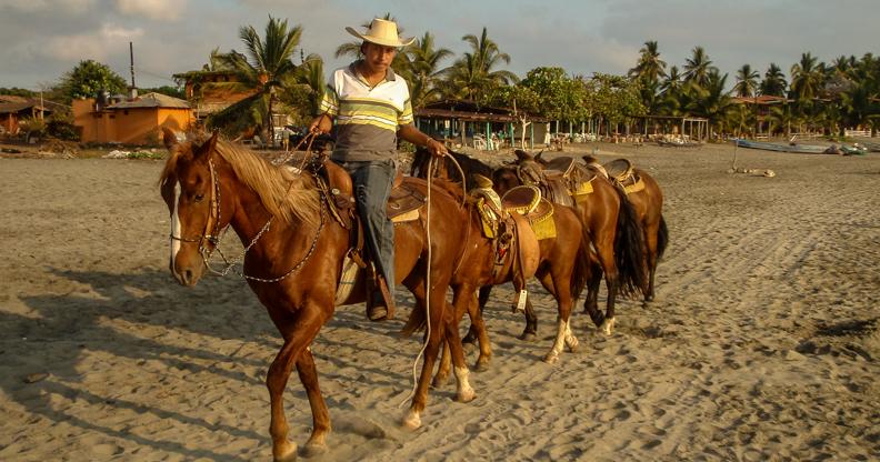 richard_horse